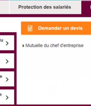 Protection du Dirigeant.png