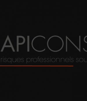 logo CapiConsult 3.png